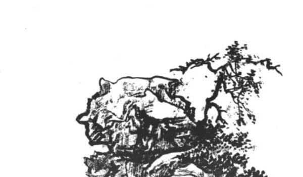 gsqm (169).jpg
